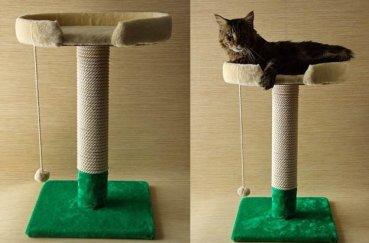 Когтеточка с отдыхающим сверху котом