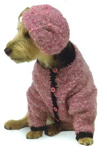 Собачка в костюме
