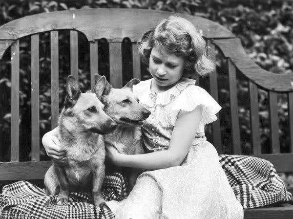 Королева Елизавета в детстве со своими собаками