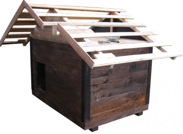 Двускатная крыша конуры