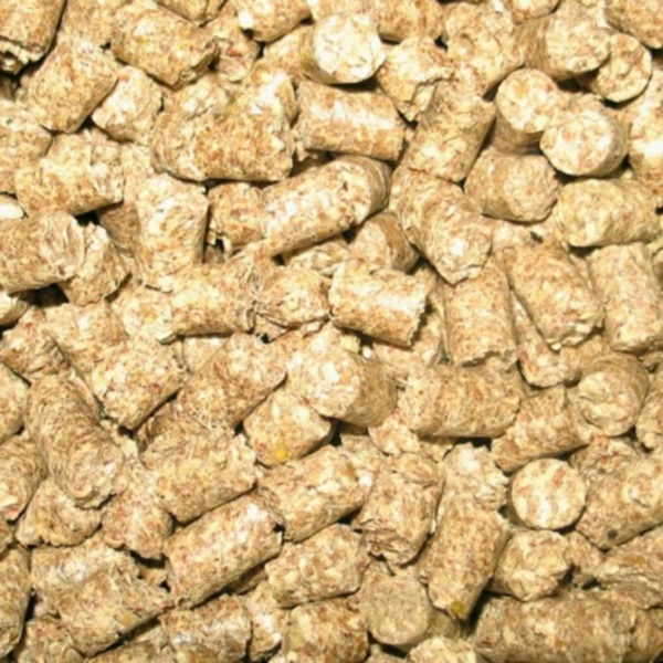 Кукурузные гранулы крупным планом
