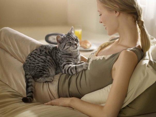 Женщина с котом лежат на кровати