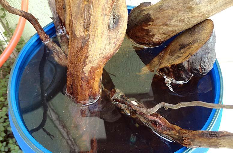 Древесина на выдержке в пресной воде